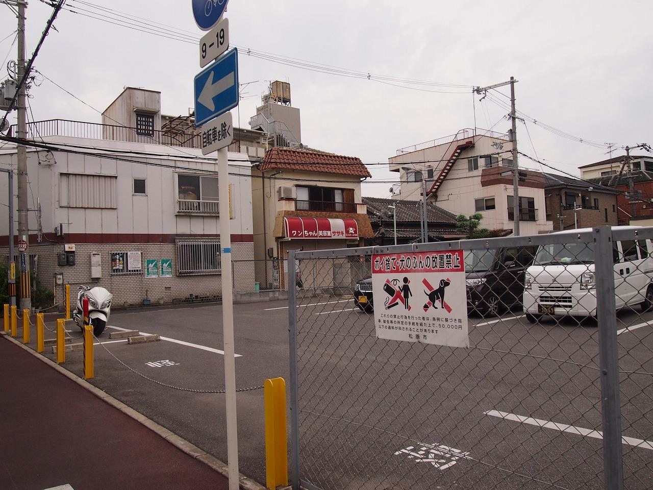 s-P1013352.jpg