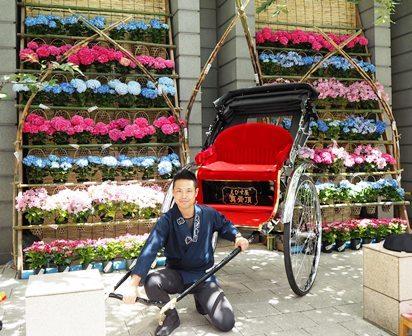 201706ajisai-reickshaw1.jpg