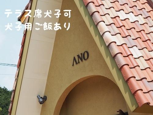 P5010053.jpg