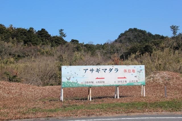 ひめしま (2)
