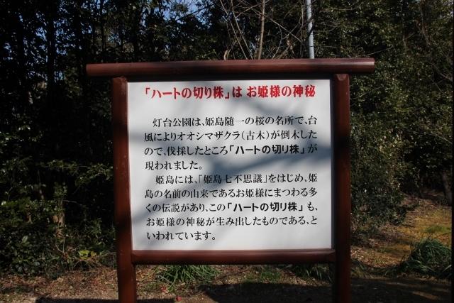 姫島灯台 (1) (640x427)