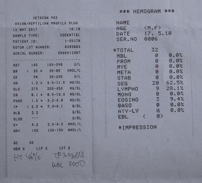 8_健康診断