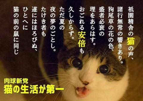 祇園精舎の猫の声