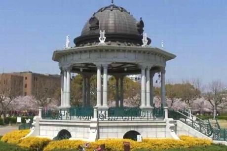 鶴舞公園の桜16