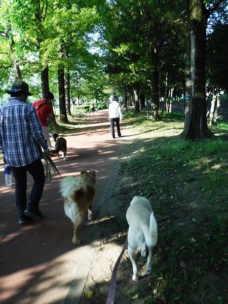 DSCF1387総合公園