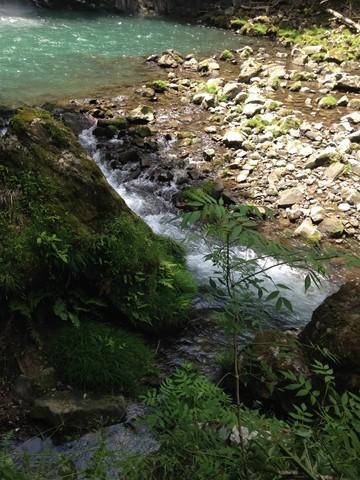 浄蓮の滝 (7) (コピー)