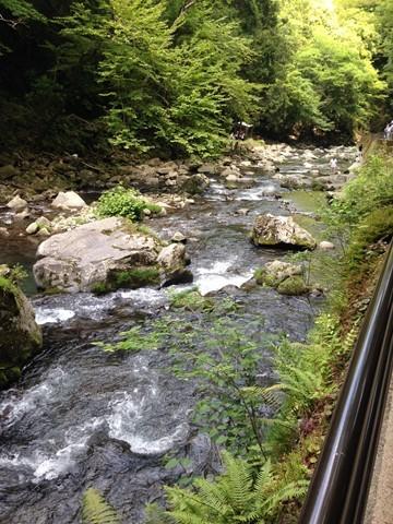 浄蓮の滝 (11) (コピー)