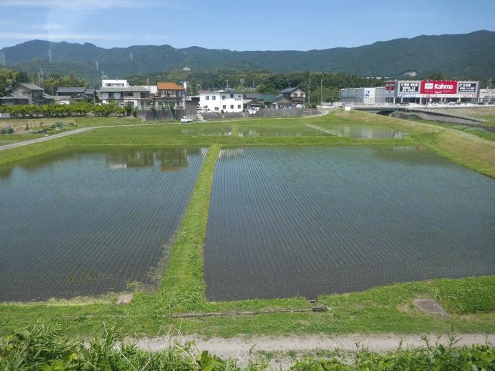 水田 車窓から 湯谷温泉 20176 13 P1000190