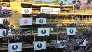 弘前公園4-30 (6)_500