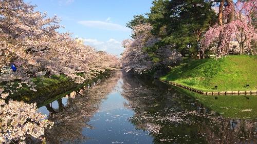 弘前公園4-30 (12)_500