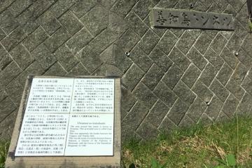 浅虫歩き (15)_500