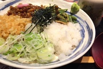 竹鼻おろし掛け (1)_500