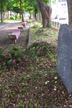青森歩き6-25-2 (8)_500