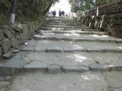 彦根城への道