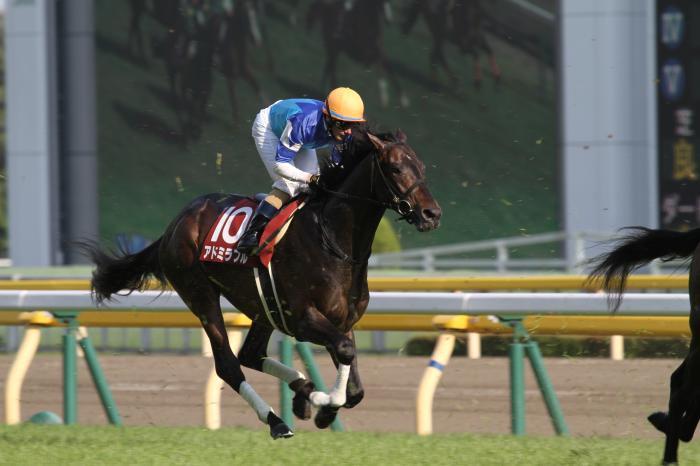 2017 アドミラブル 青葉賞1