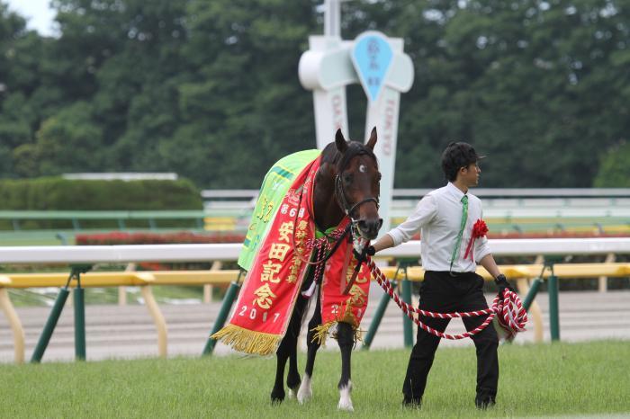 2017 サトノアラジン 安田記念5