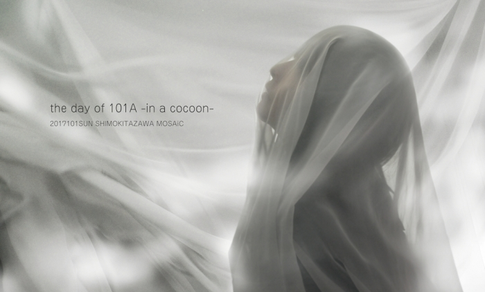 101a-cocoon.jpg
