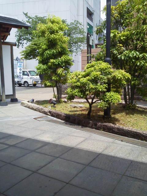 DCIM1085.jpg