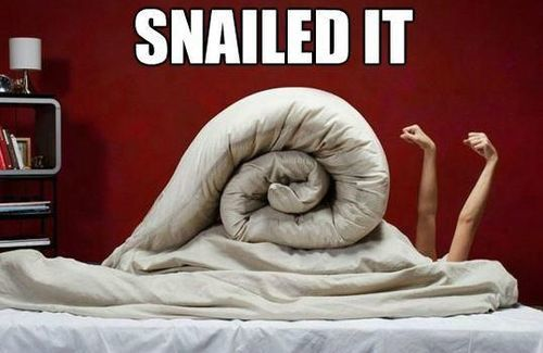 nailed it=やったね、うまくいったねという意味のスラング snail=カタツムリ