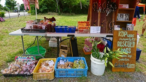 s-野菜の販売