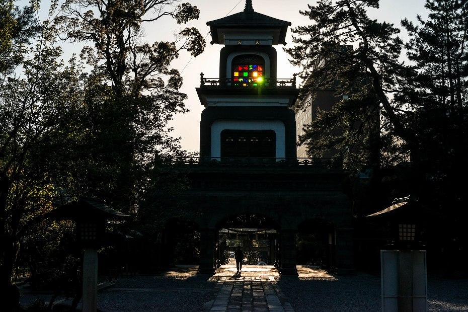 2017.04.28尾山神社の兼六園菊桜7