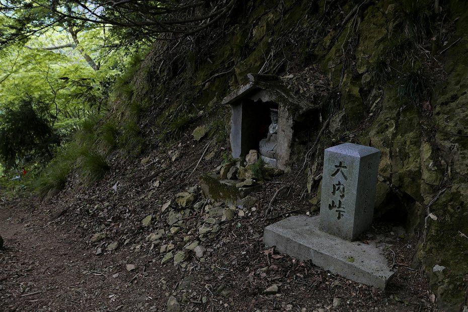 2017.05.09富士写ケ岳シャクナゲ37