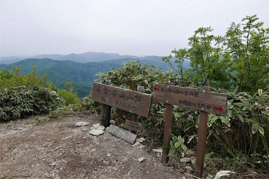 2017.05.09富士写ケ岳シャクナゲ28