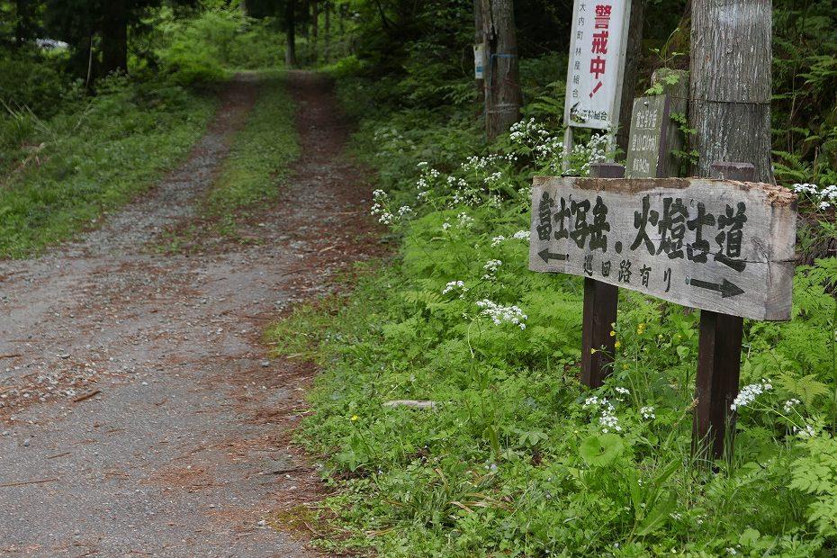 2017.05.09富士写ケ岳シャクナゲ1