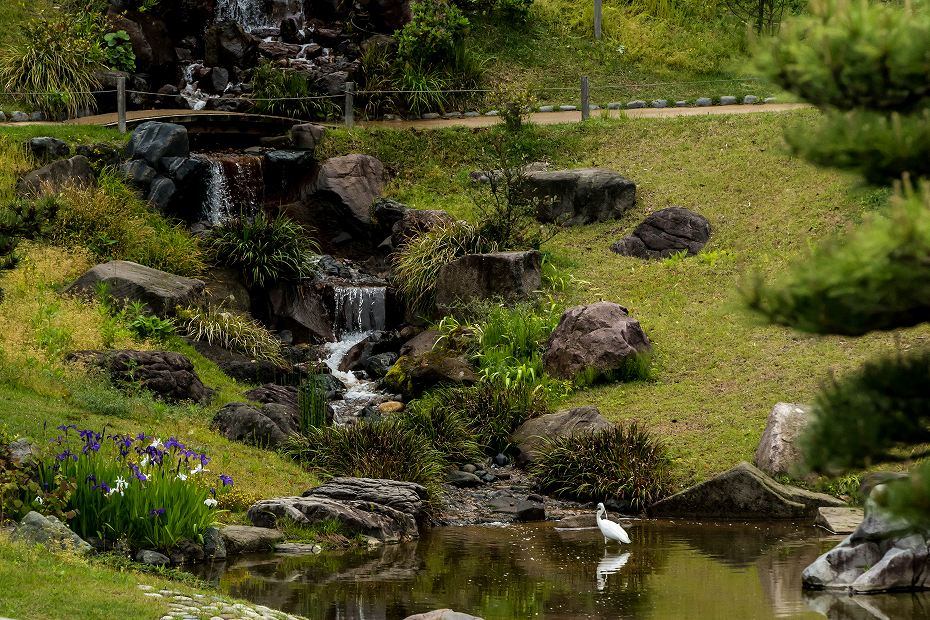 2017.05.14春の金沢城公園3
