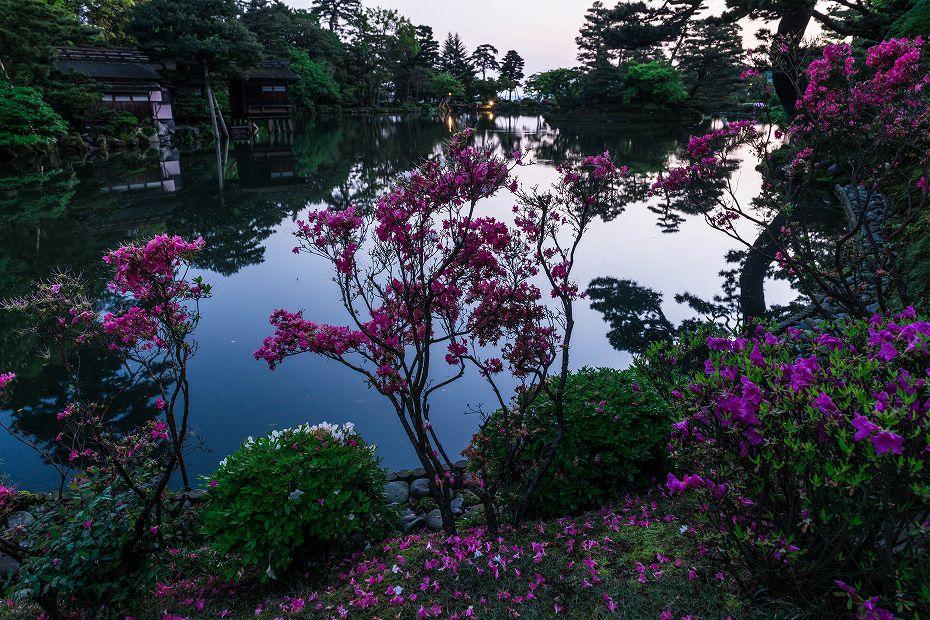 2017.05.14春の兼六園の朝景2