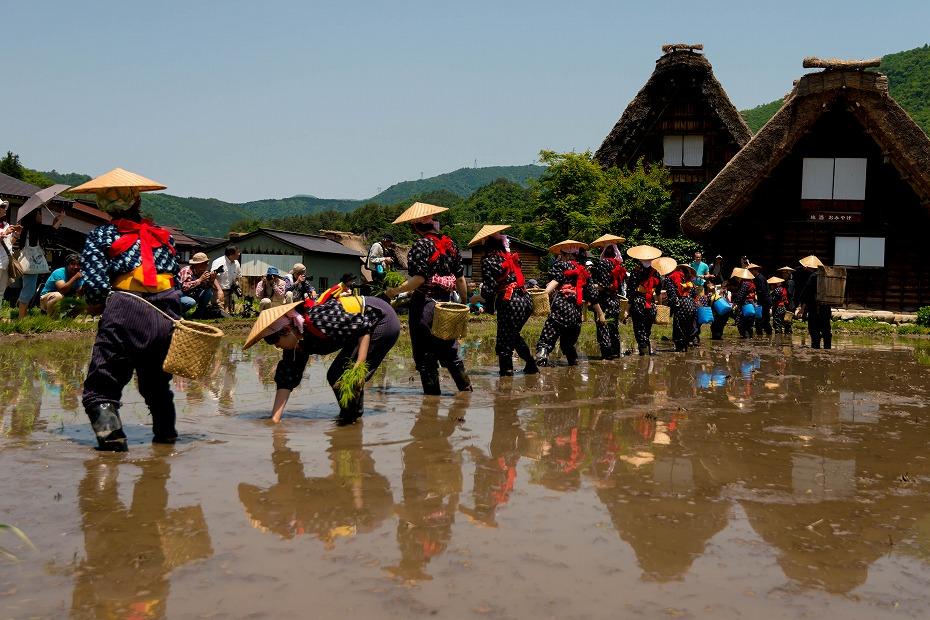 2017.05.29白川郷の田植え祭り30