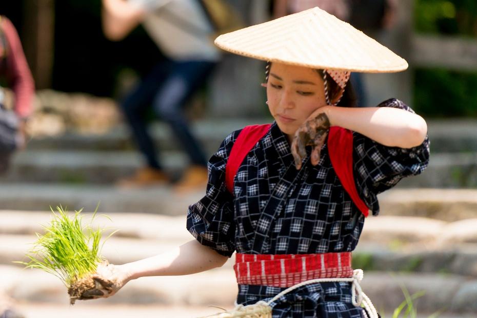 2017.05.29白川郷の田植え祭り29