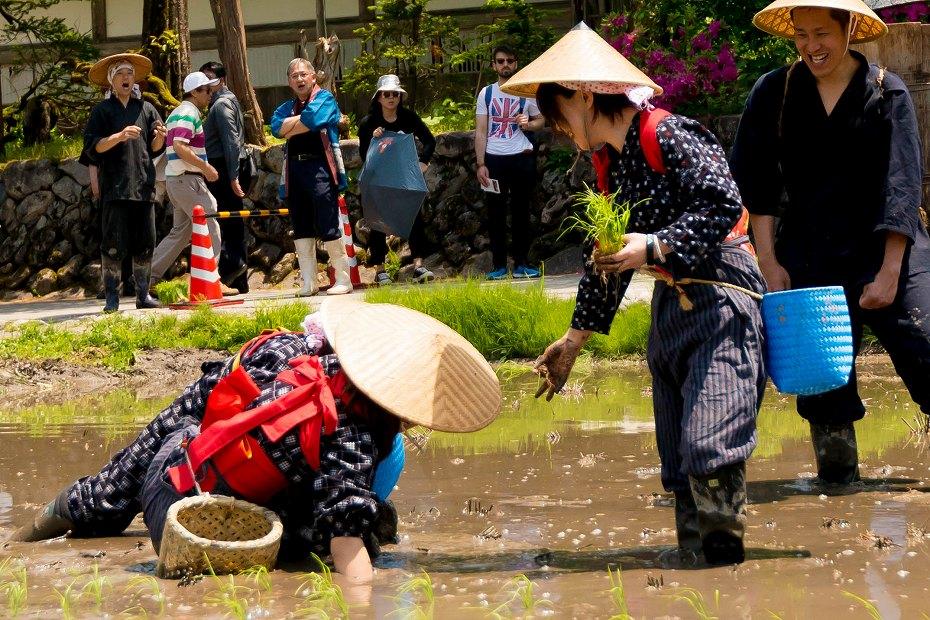 2017.05.29白川郷の田植え祭り26