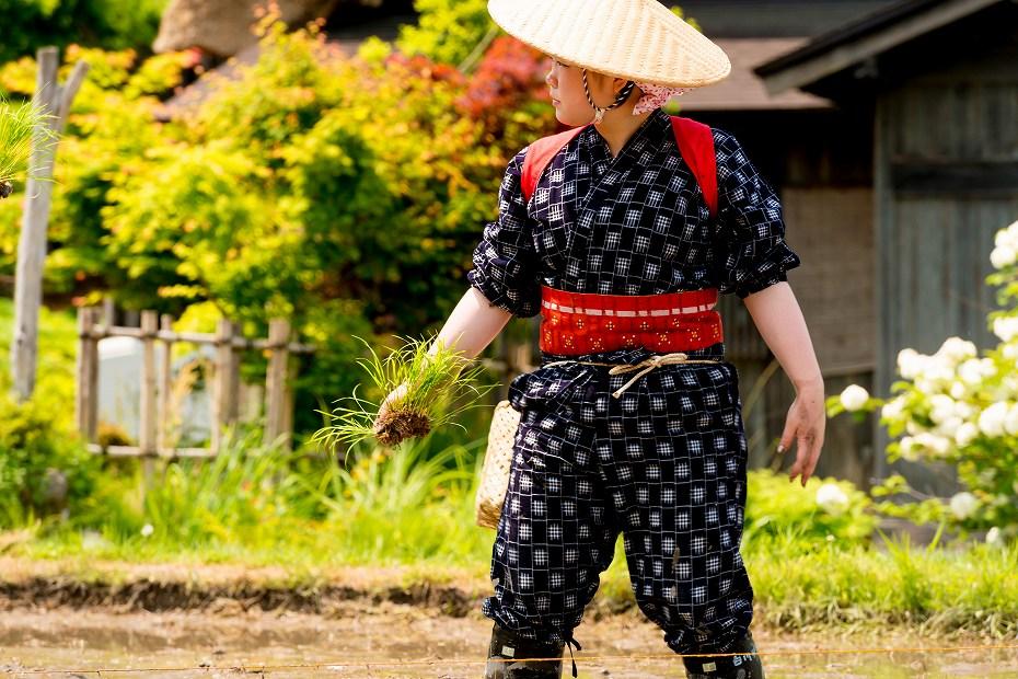 2017.05.29白川郷の田植え祭り22
