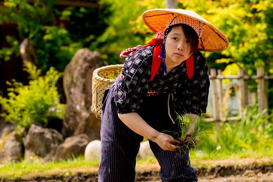 2017.05.29白川郷の田植え祭り20