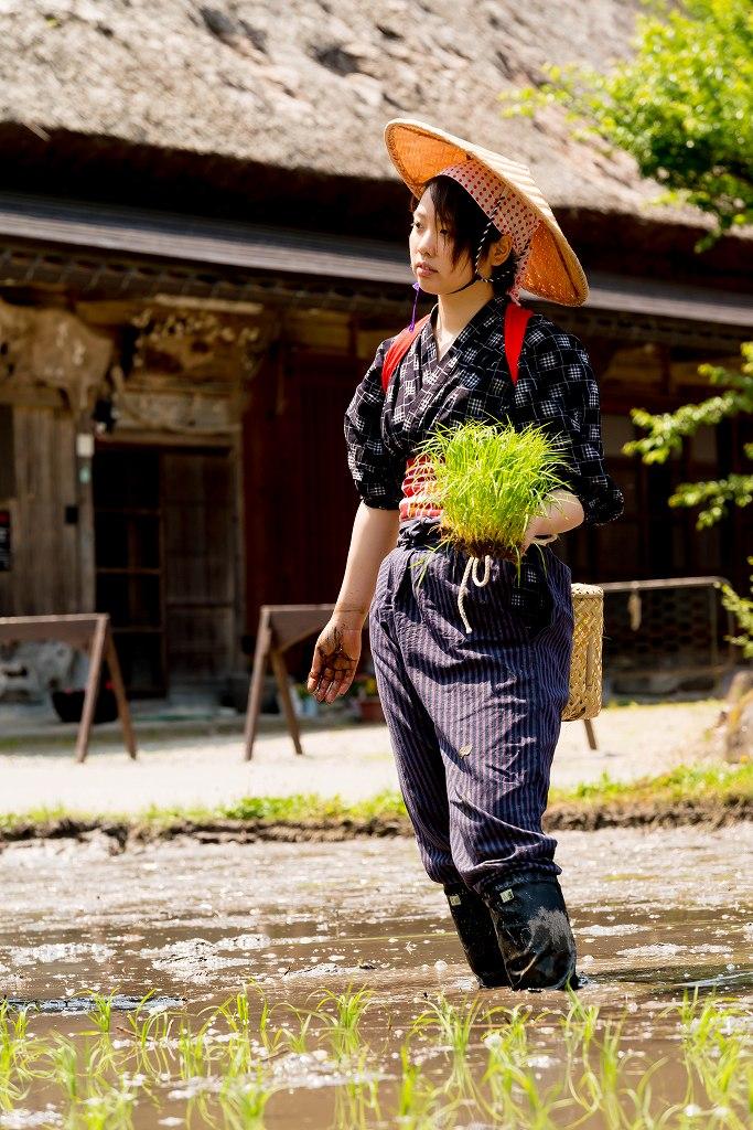 2017.05.29白川郷の田植え祭り15