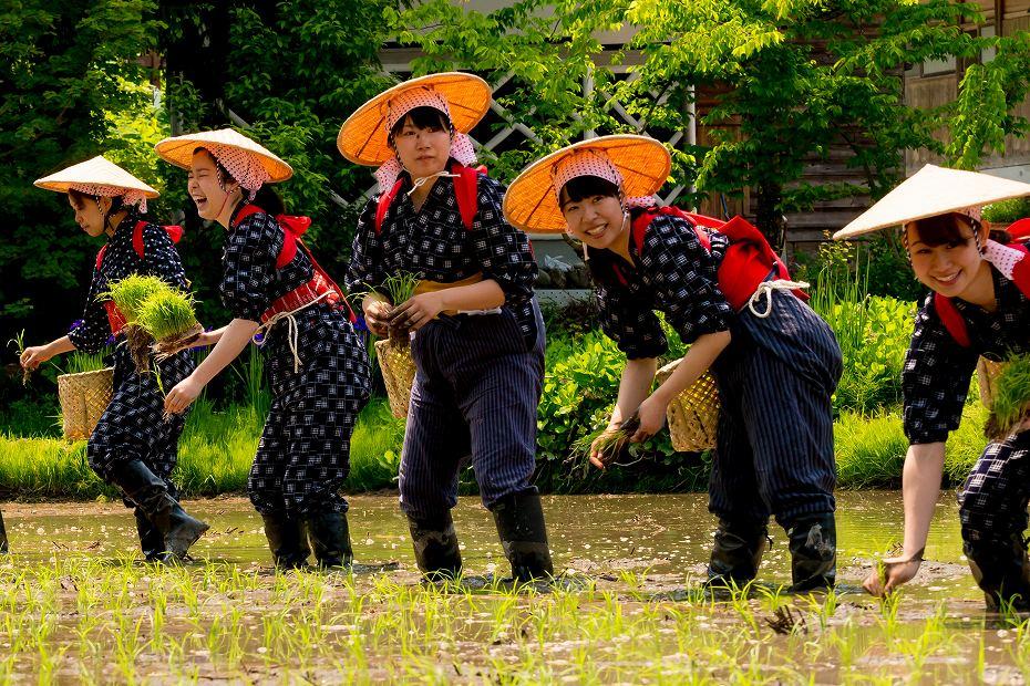 2017.05.29白川郷の田植え祭り14