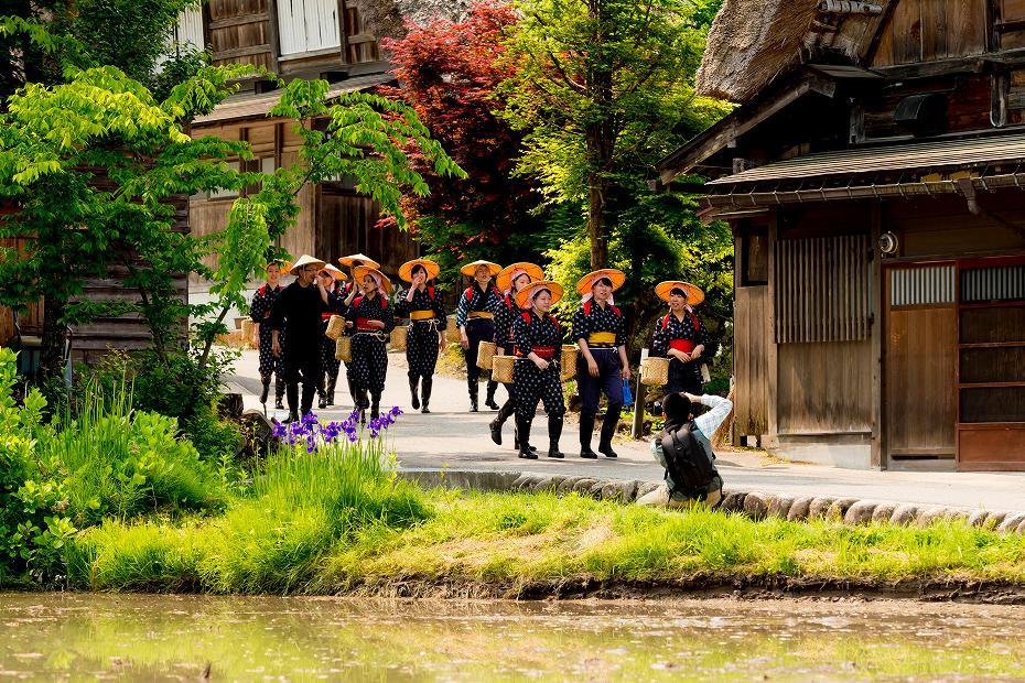 2017.05.29白川郷の田植え祭り4
