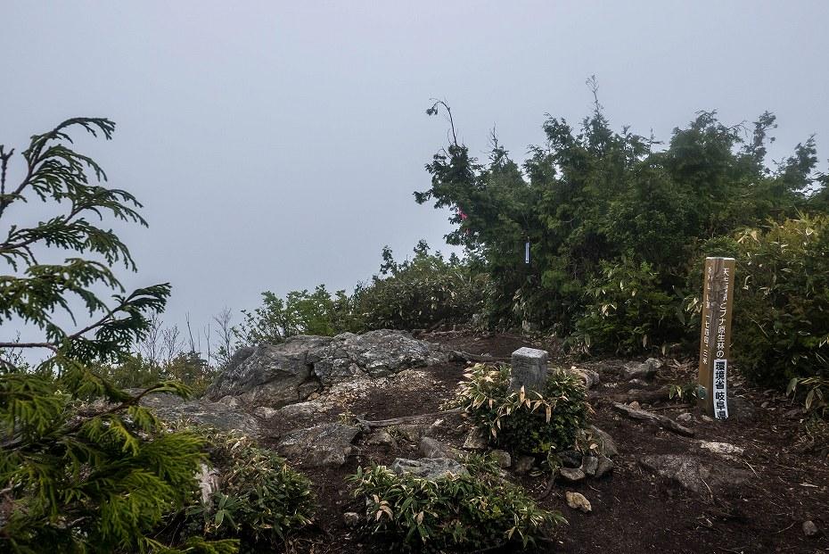 2017.06.04籾糠山と天生高層湿原13