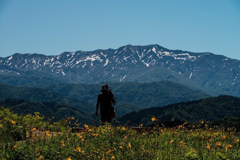 2017.06.17白山高山植物園3