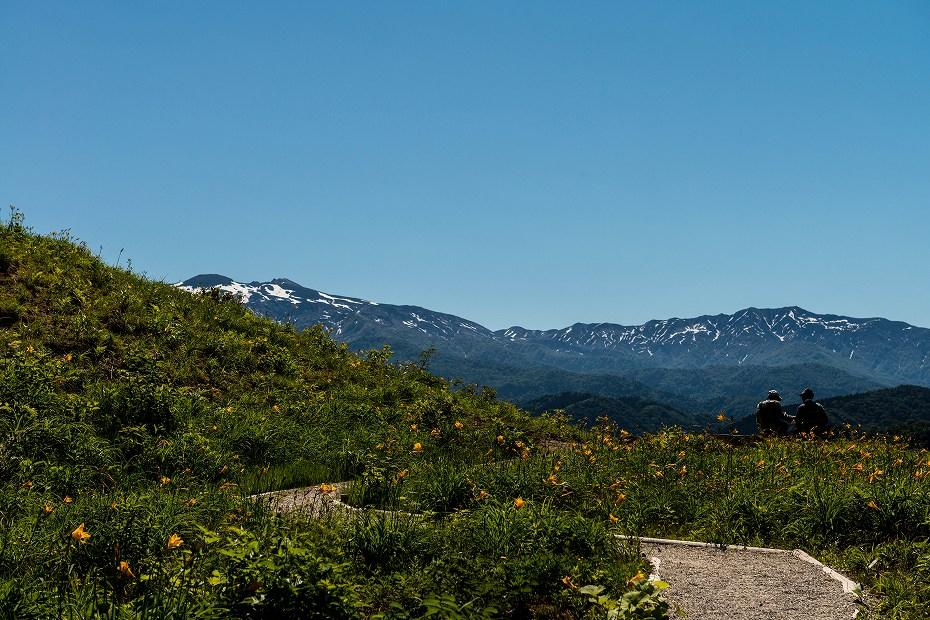 2017.06.17白山高山植物園1