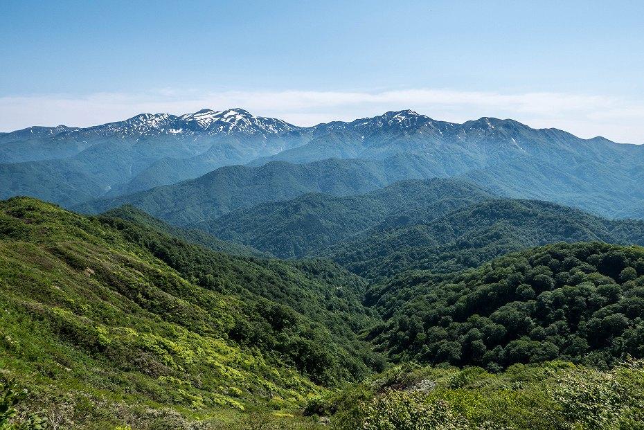 2017.06.19三ツ谷から赤兎山、杉峠30