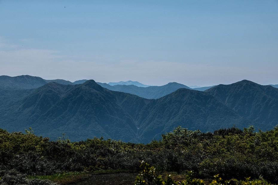 2017.06.19三ツ谷から赤兎山、杉峠28