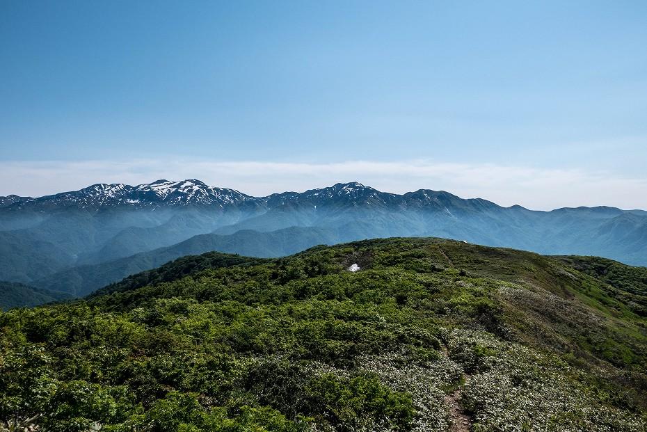 2017.06.19三ツ谷から赤兎山、杉峠25