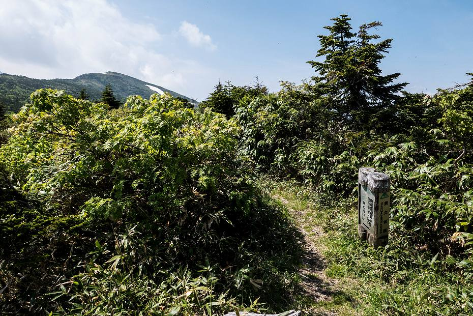 2017.06.24加賀禅定道_百四丈滝と天池30