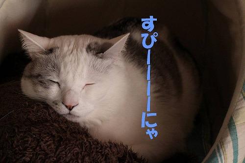s-170511-3.jpg
