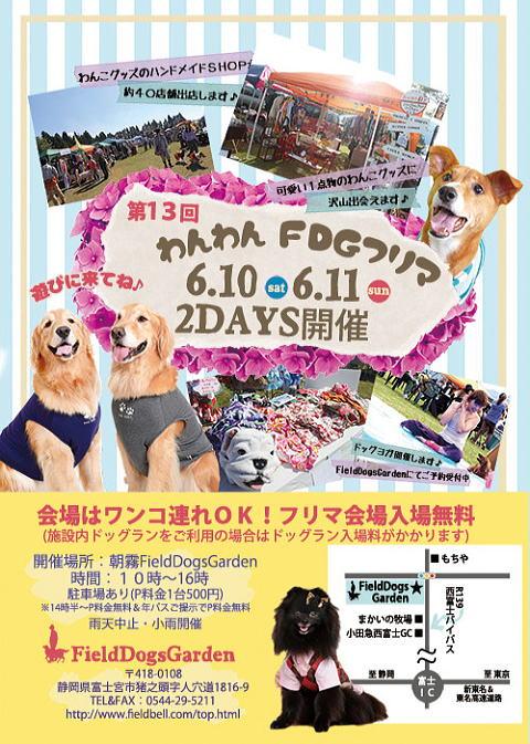 朝霧170610-1