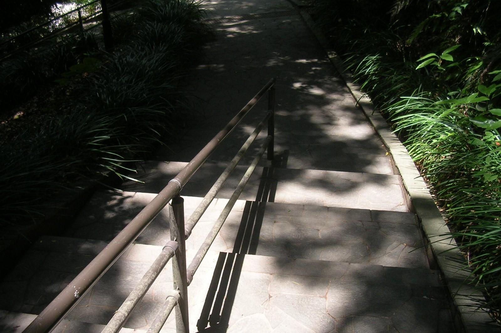 階段 東福城跡