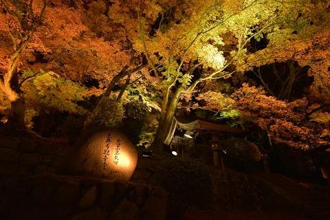 jpg三井寺