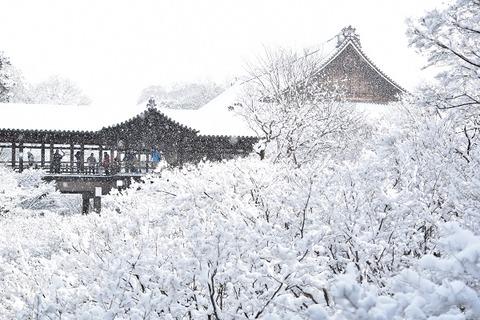 2東福寺雪